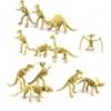 โมเดลโครงกระดูกไดโนเสาร์ 12 ตัว