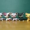 LPS คนรักแมว-2 (ชุด 5 ตัว ยอดนิยม)