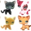 รวมแมวยอดนิยม ชุด 16 ตัว (Hasbro) ชุด A thumbnail 3