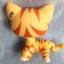 แมวเปอเซียลายเสือสีส้ม ตาสีเขียว thumbnail 2