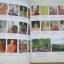 ประวัติและปฏิปทา หลวงปู่ลี กุสลธโร วัดป่า เกษรศีลคุณธรรมเจดีย์ (ภูผาแดง) thumbnail 6