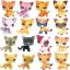รวมแมวยอดนิยม ชุด 16 ตัว (Hasbro) ชุด A thumbnail 1