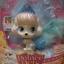 แมว Slipper สัตว์เลี้ยงเจ้าหญิงซินเดอเรล่า thumbnail 2