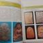 หนังสือ ปทานุกรมพระสมเด็จ เล่ม.5 อาจารย์ อรรคเดช กฤษณะดิลก thumbnail 6
