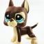 แพ็คคู่สุนัขเกรดเดน สีน้ำตาล-สีชมพู thumbnail 4