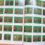 หนังสือพระราชทานเพลิงศพ พระญาณสิทธาจารย์ (หลวงปู่สิม พุทธาจาโร) วัดถ้ำผาปล่อง เชียงใหม่ (2 เล่มชุด) thumbnail 3