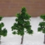 ต้นไม้จิ๋ว ขนาด 3.2 ซ.ม. 50 ต้น thumbnail 1